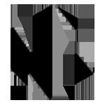 NONAME eSports