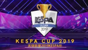 英雄联盟2019 KeSPA杯直播