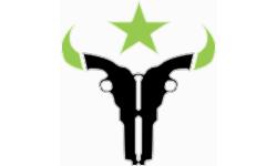 Houston Outlaws