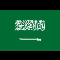 英雄联盟比赛沙特阿拉伯代表队