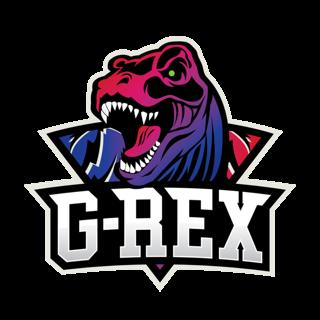 GRX电子竞技俱乐部