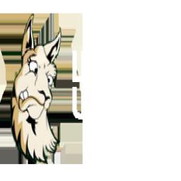 Lamers United