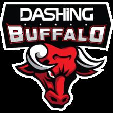 Dashing Buffalo